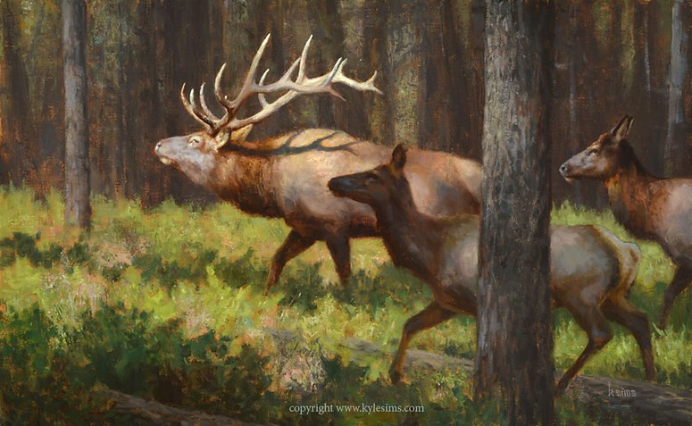 Original Rocky Mountain Elk Painting