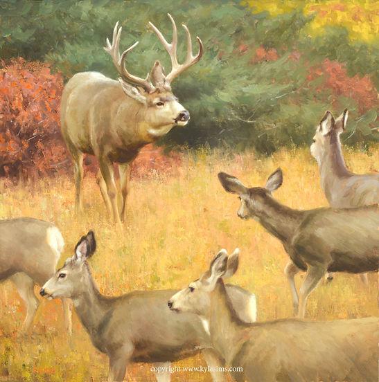 Original Mule Deer Painting