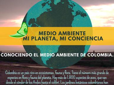 MEDIO AMBIENTE COLOMBIANO