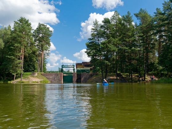 Fix the Damn Dams: The Effect of Dam Removals on Local Waterways