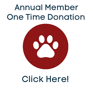 Monthly-Donors-2.png