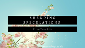 Shedding Speculations From Your Life