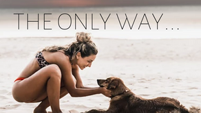 THE ONLY WAY...
