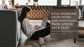 Still Working From Home And Suffering From Lower Back Pain?