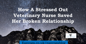 How A Stressed Out Veterinary Nurse Saved Her Broken Relationship