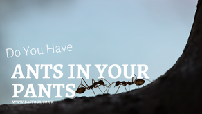Have You Got Ants In Your Pants?