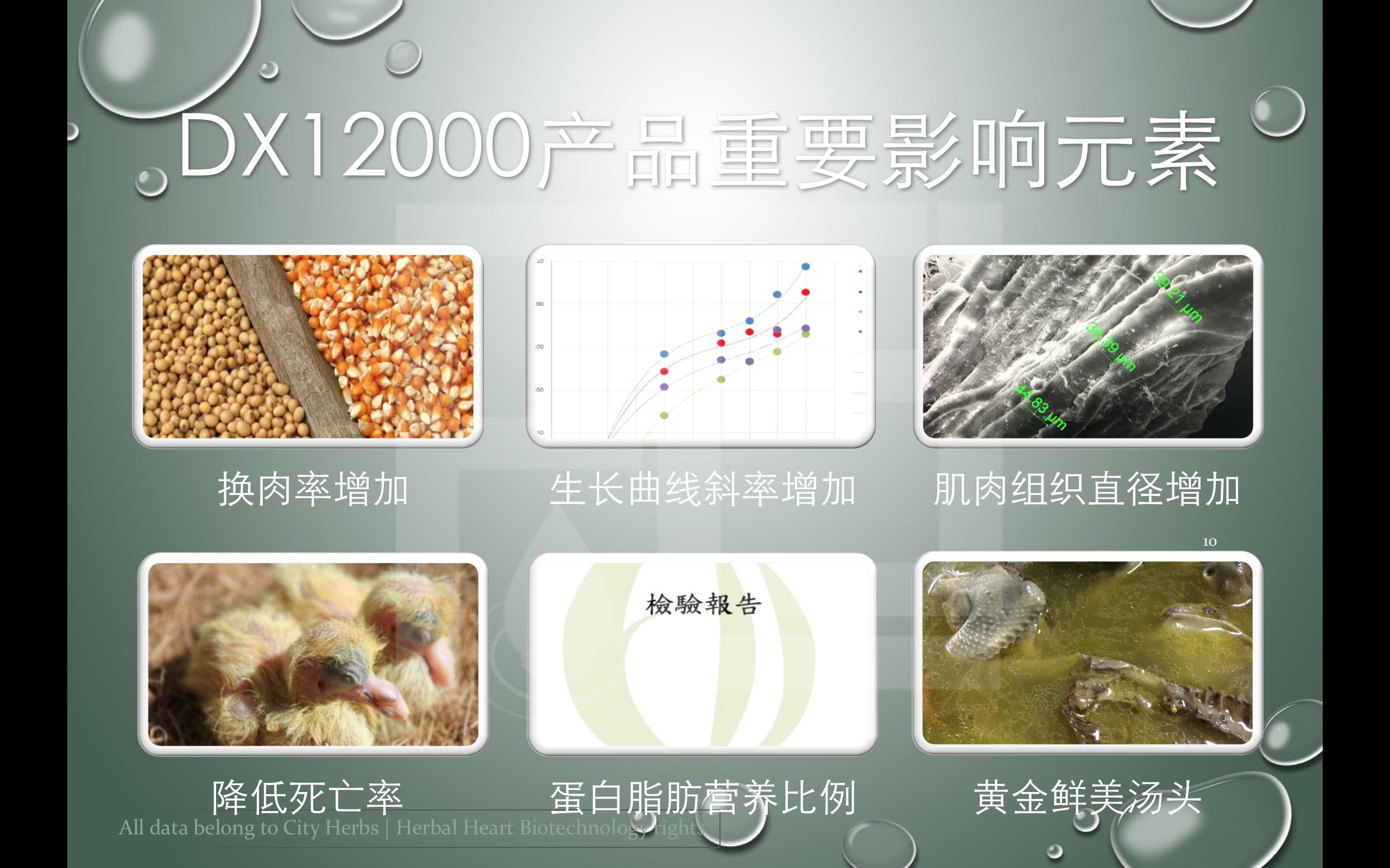 2017活絡生技DX12000