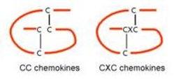 Figure 1. Chemokine class structures.jpg