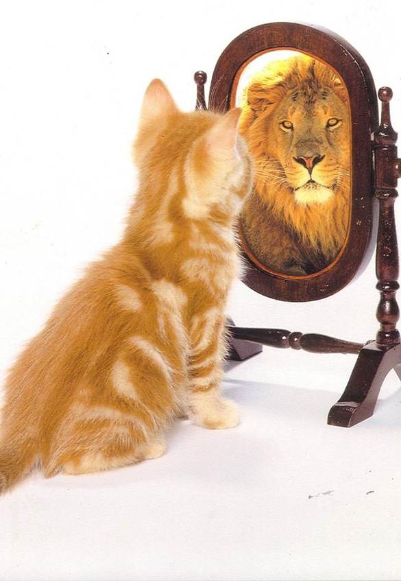 ¿Crees en ti mismo?