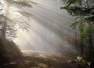 morning-1789903_960_720.jpg