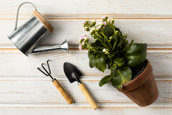 watering-can-and-flower-pot.jpg