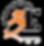 3ES logo_transparent.png