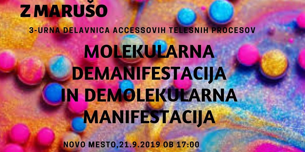Novo mesto: 3-urna delavnica Molekularna demanifestacija/ Demolekularna manifestacija