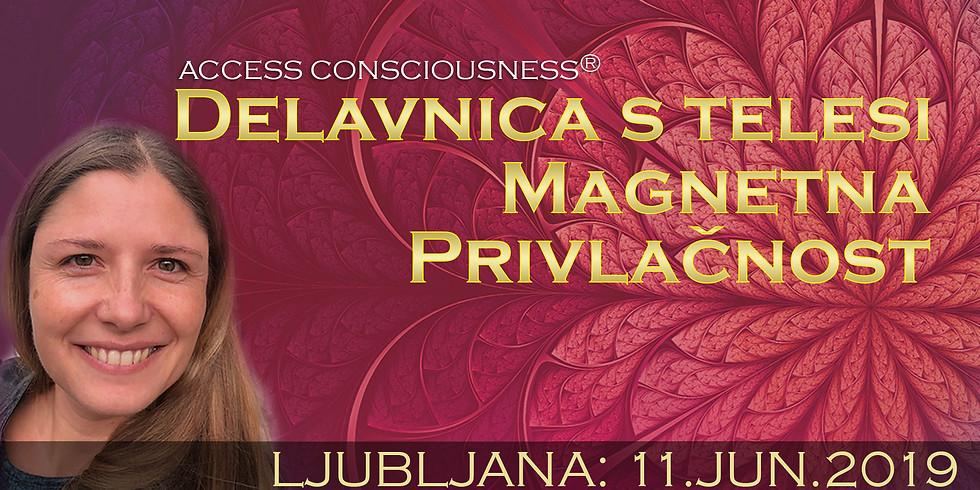 Ljubljana: Delavnica Magnetna Privlačnost