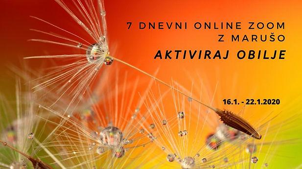 Copy of Copy of Copy of SOP povabilo.jpg