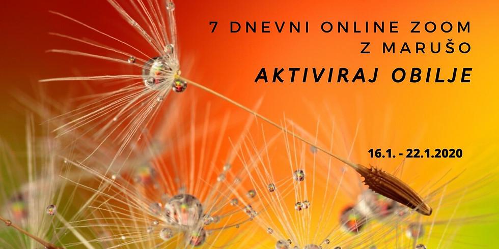 Online zoom: 7 dnevni online zoom Aktiviraj obilje