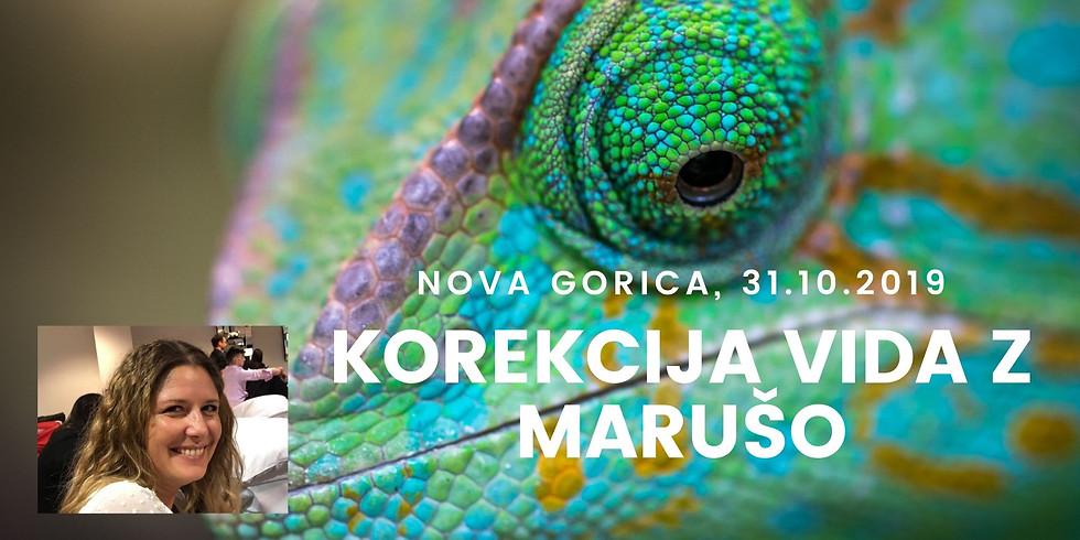 Nova Gorica: Delavnica Korekcija vida