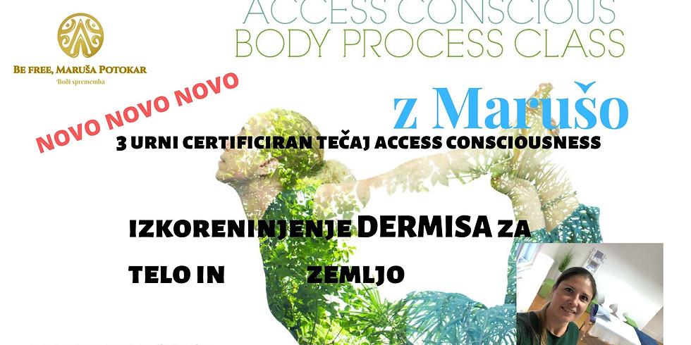 Ljubljana: Delavnica  izkoreninjenje dermisa za telo in zemljo
