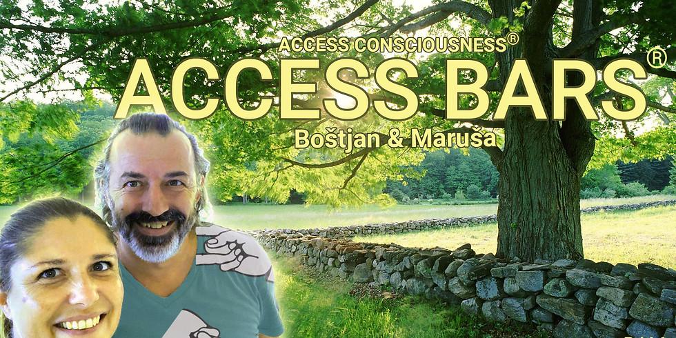 Maribor: Brezplačna predstavitev Access  orodij - Access Bars®