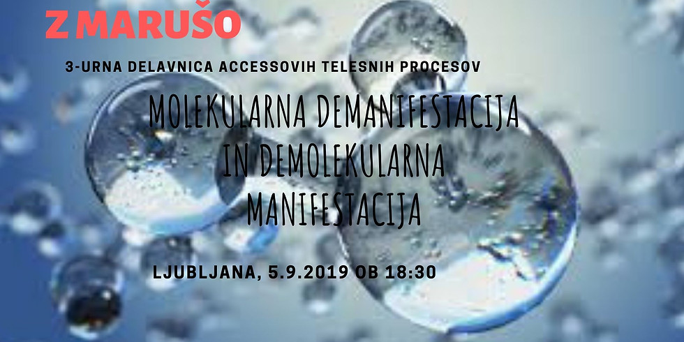 Ljubljana: 3-urna delavnica Molekularna demanifestacija/ Demolekularna manifestacija