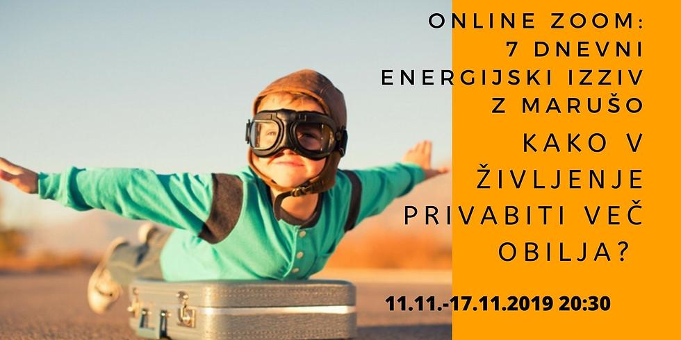 Online zoom: 7 dnevni energijski izziv - Kako v življenje privabiti več obilja?
