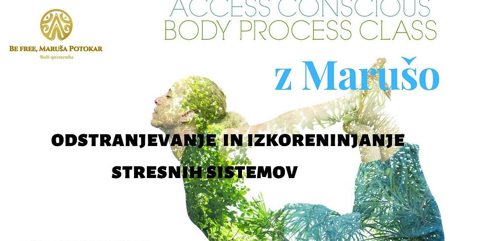 Novo mesto: Odprava stresa, luskavice in kožnih bolezni