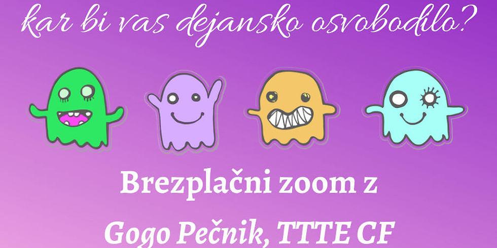 Free online zoom: Pogovarjajte se z entitetami in Gogo Pečnik
