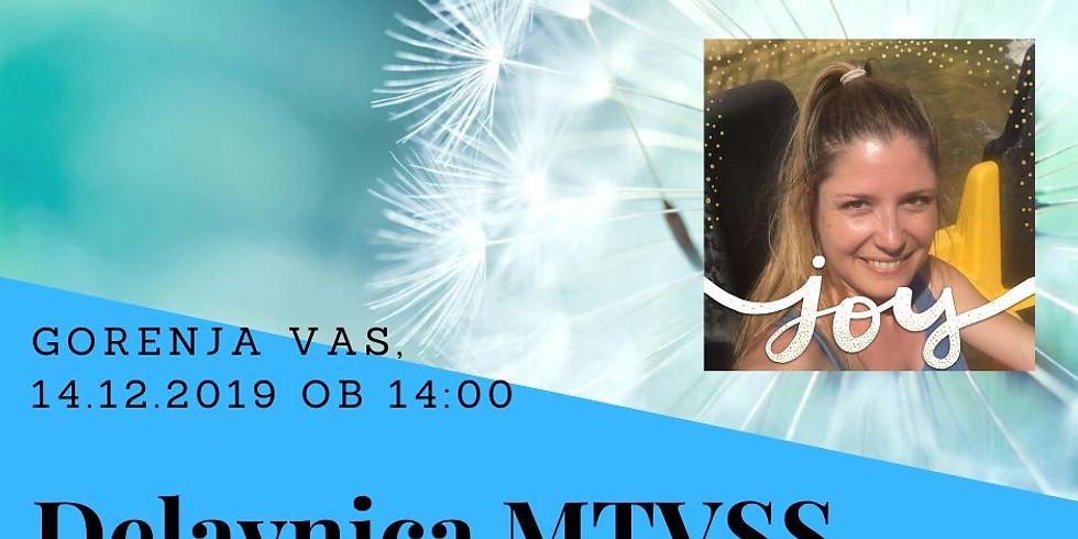 Gorenja vas: Delavnica MTVSS