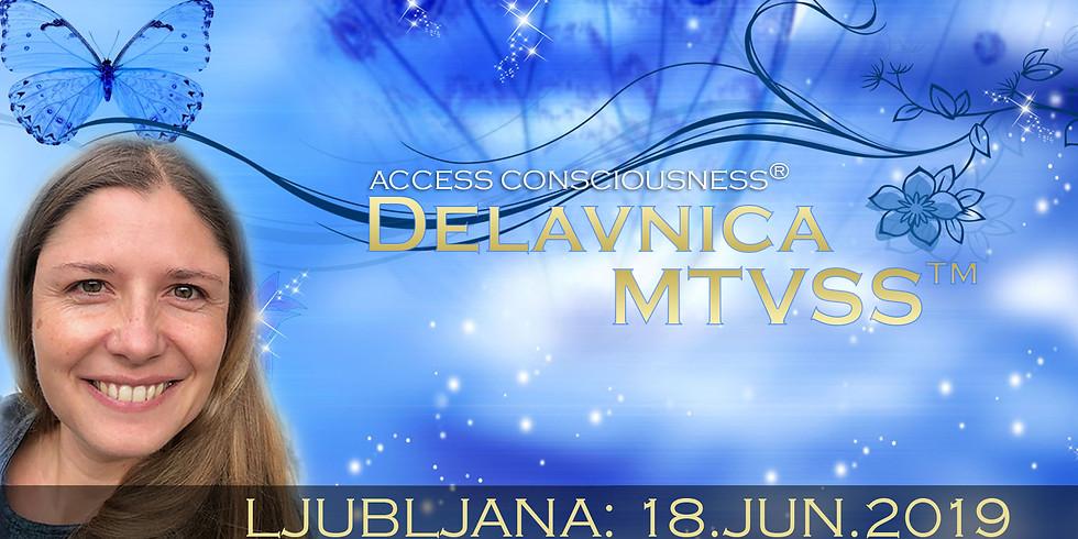 Ljubljana: Delavnica MTVSS