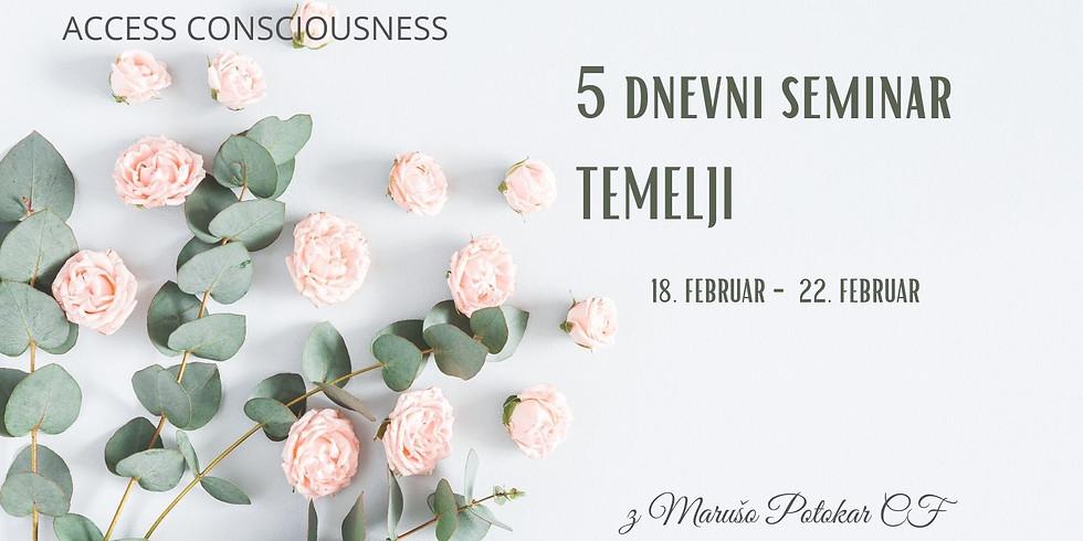Online: 5 dnevni seminar Temelji z Marušo