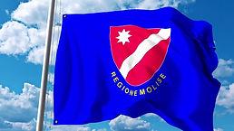 Flag molise.jpg