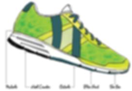 shoe diagram.png