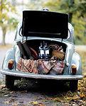 car picnic.jpg