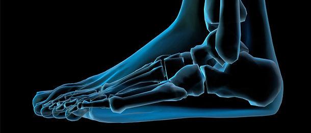 foot view.jpg