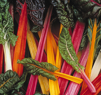 Crazy for Chard