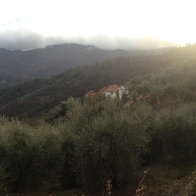 Azienda San Damiano