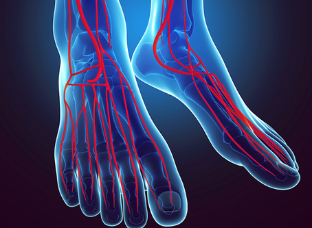Ankle  Brachial Index - Blood Pressure in the Lower Extremity  and Peripheral Artery Disease