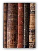 Finas Bücher.jpg
