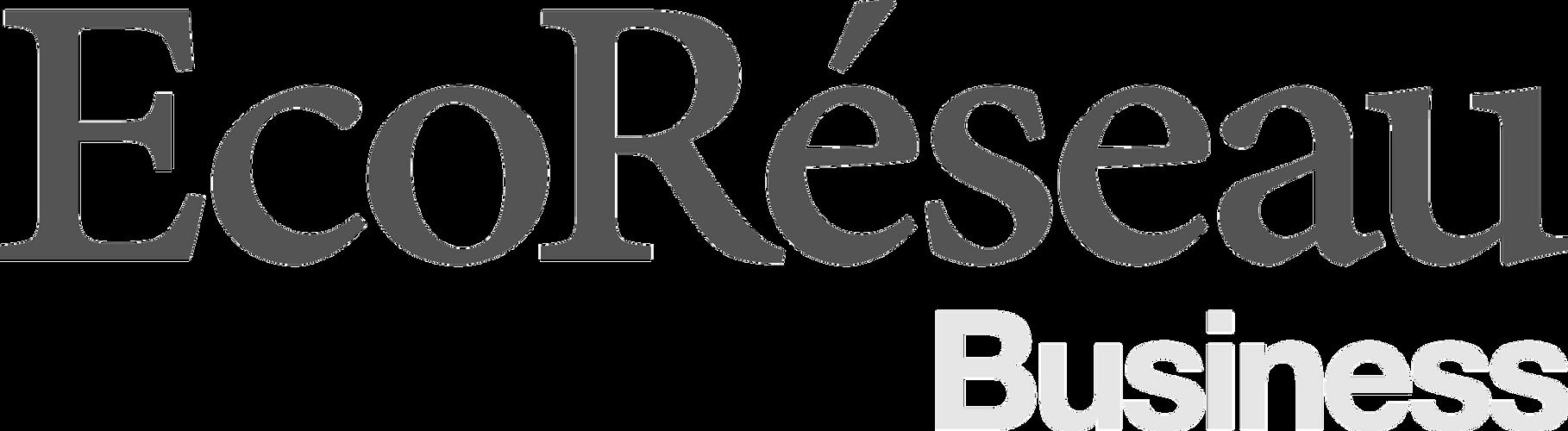 Logo-EcoReseau-Business-bleu-et-gris-san