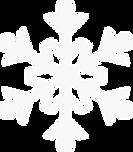 White%20Snowflake%20_edited.png