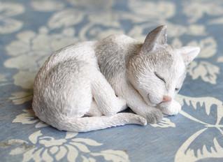 Little Cat Tutorial