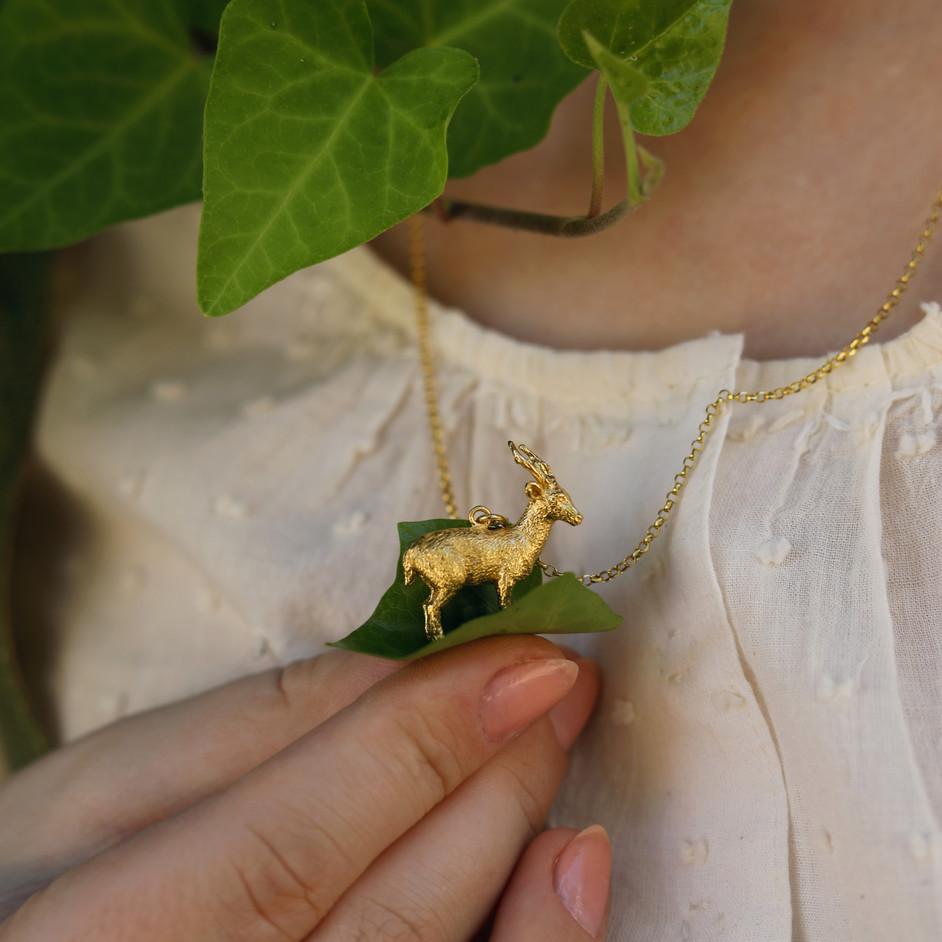 Gold Calamian Deer