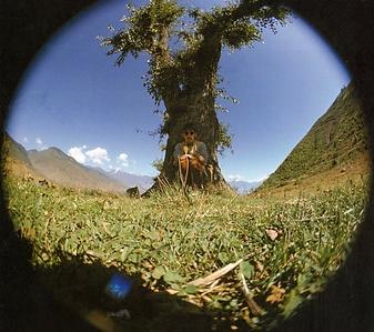 george harrison selife in india, 1966.pn
