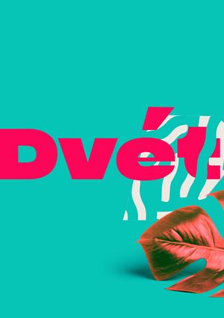 Dvet - Branding and Packaging ( Personal Branding Project )