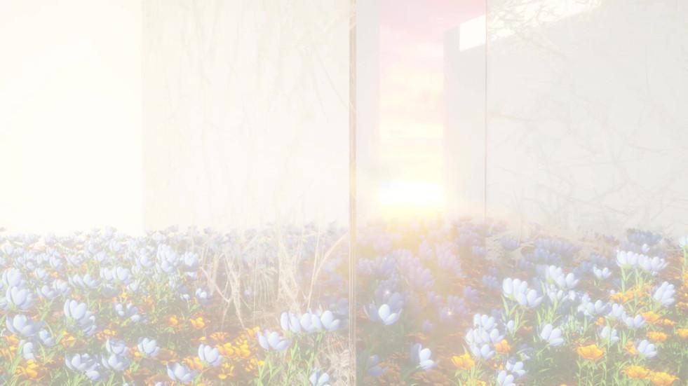 Visual Film II and III.mp4