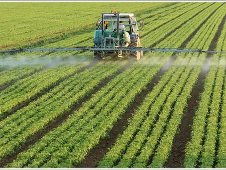 Почему агрономическое невежество является более серьезной проблемой, чем агрохимикаты