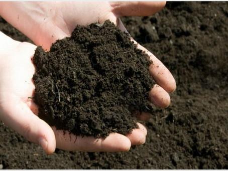 Подготовка грунта для рассады клубники, земляники