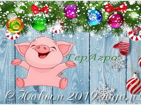 ГерАгро поздравляет Вас С Новым 2019 годом!
