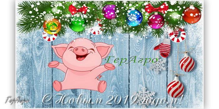 новый 2019 год свинка