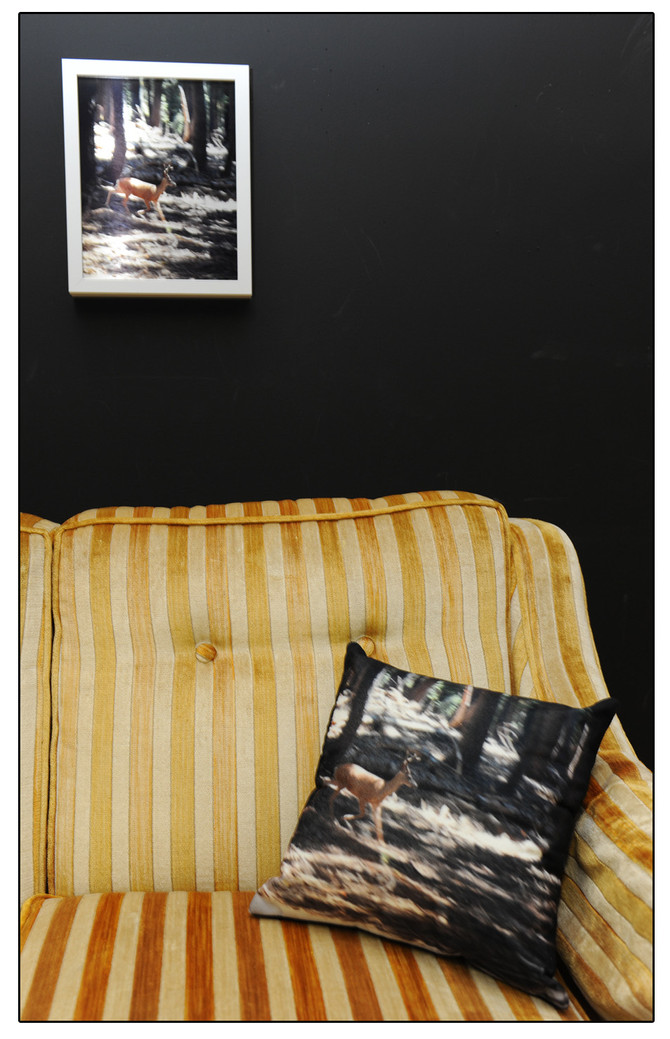 Image, Metal Plate, Pillow